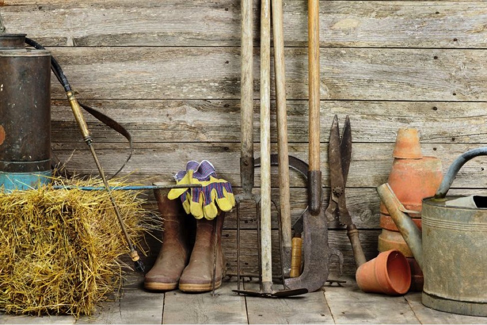 Whether You Are A Beginning Gardener Or An Experienced One, There Are Some Gardening  Supplies That You Are Just Going To Need.