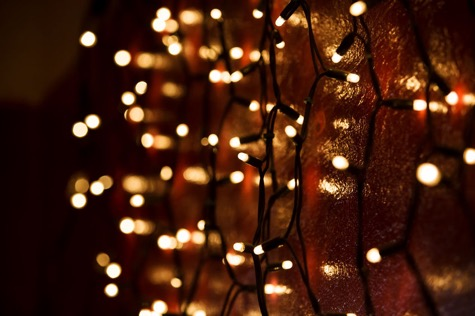 How To Set Up Christmas Lights Garden