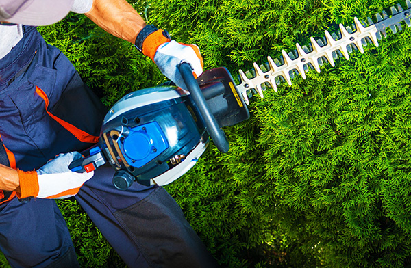 Why You Should Hire a Landscaping Company